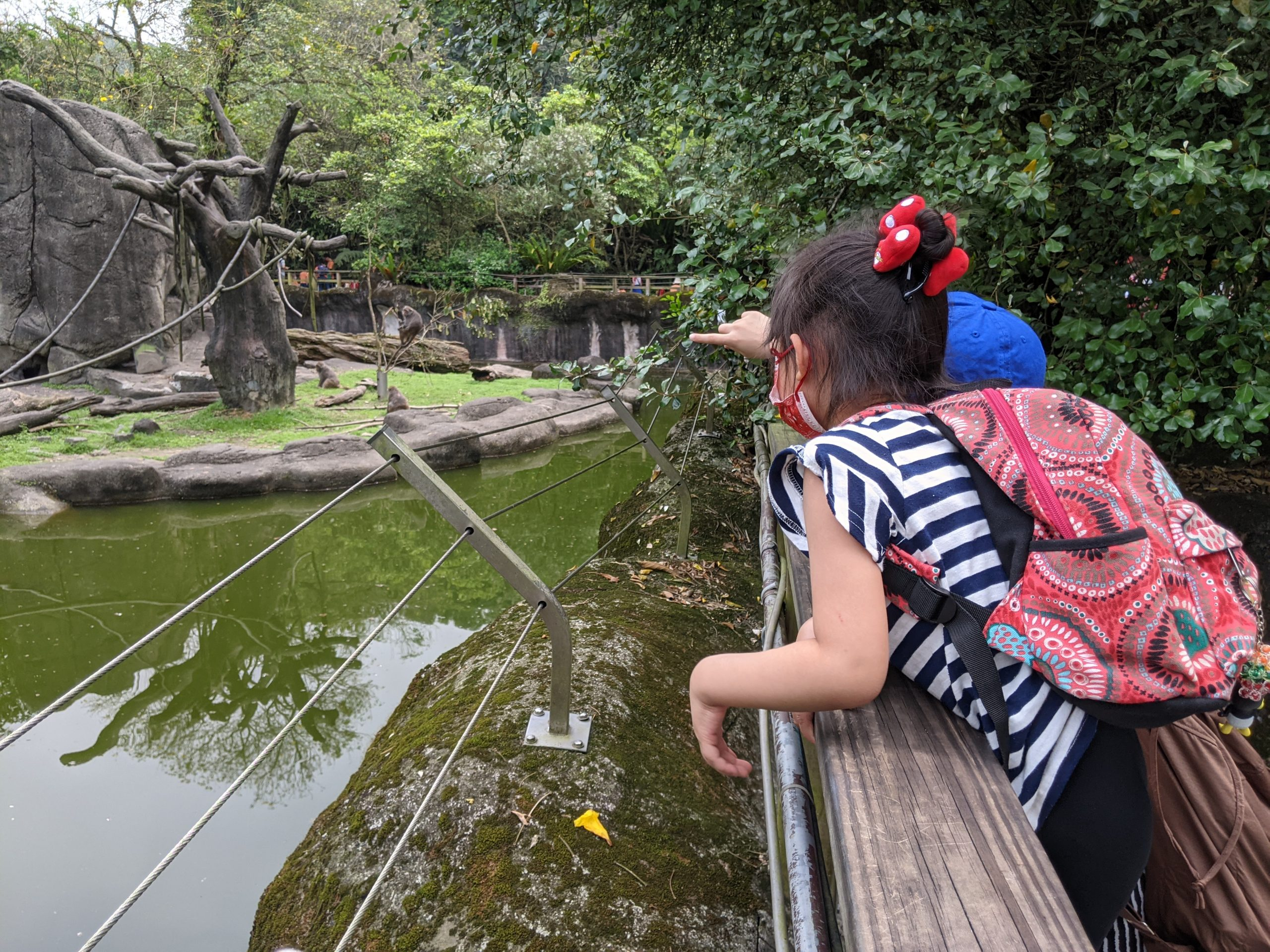 【2021 Spring-W5-1 自學專案】生活課-到動物園觀察